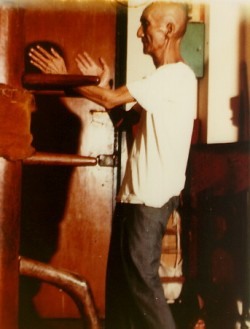 Ip Man wooden Dummy