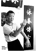 Ip ching doing biu gee, the wing chun third form
