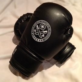 Sanda Weight 10oz Boxing Gloves