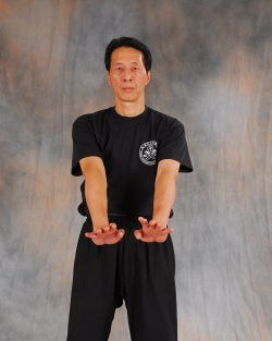 Wing Chun Techniques Glossary