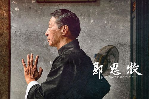 Learn wing chun techniques pictures